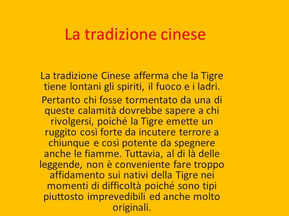 La tradizione cinese La tradizione Cinese afferma che la Tigre tiene lontani gli spiriti, il fuoco e i ladri.