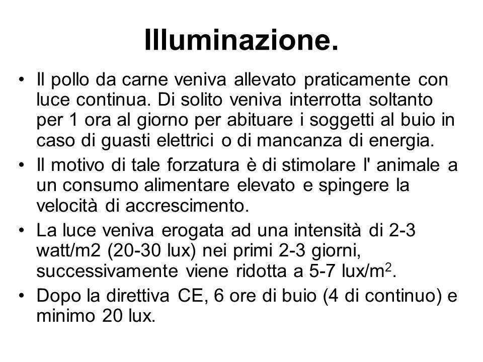 Illuminazione.