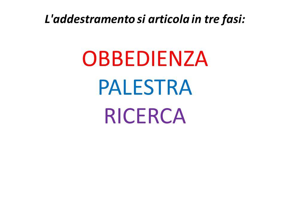 L addestramento si articola in tre fasi: OBBEDIENZA PALESTRA RICERCA