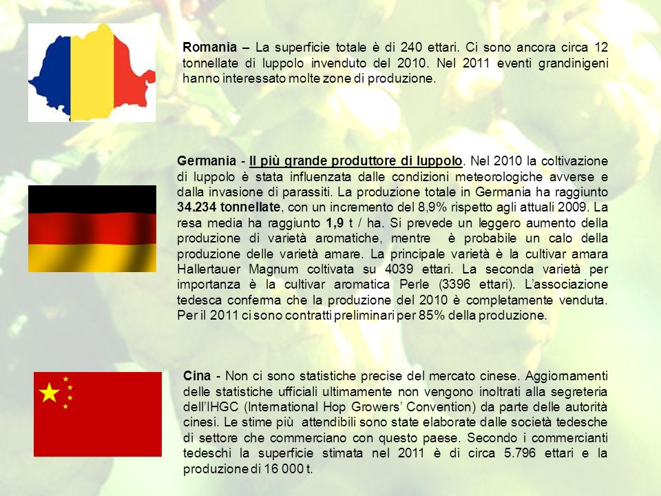 Romania – La superficie totale è di 240 ettari