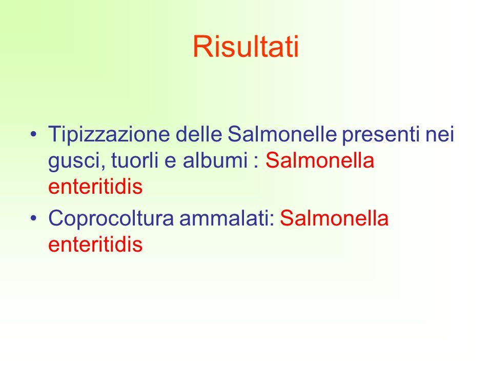 Risultati Tipizzazione delle Salmonelle presenti nei gusci, tuorli e albumi : Salmonella enteritidis.