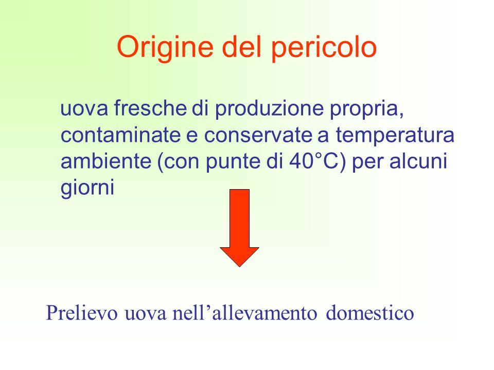 Origine del pericolo uova fresche di produzione propria, contaminate e conservate a temperatura ambiente (con punte di 40°C) per alcuni giorni.