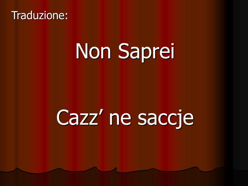Traduzione: Non Saprei Cazz' ne saccje