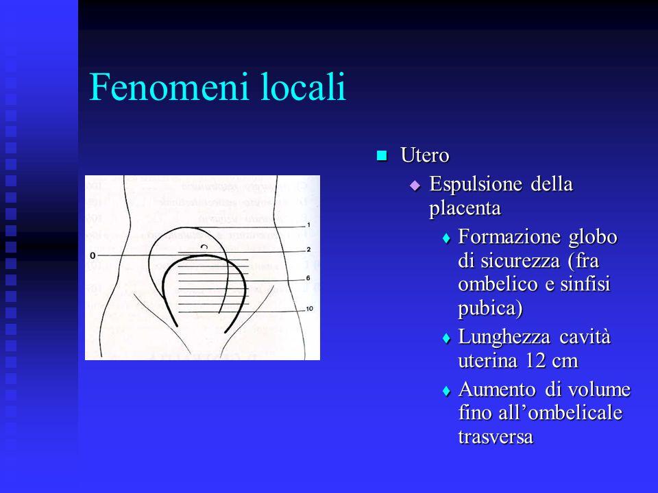 Fenomeni locali Utero Espulsione della placenta