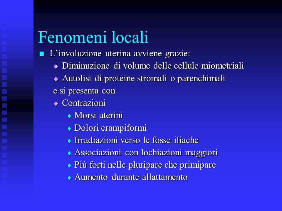Fenomeni locali L'involuzione uterina avviene grazie: