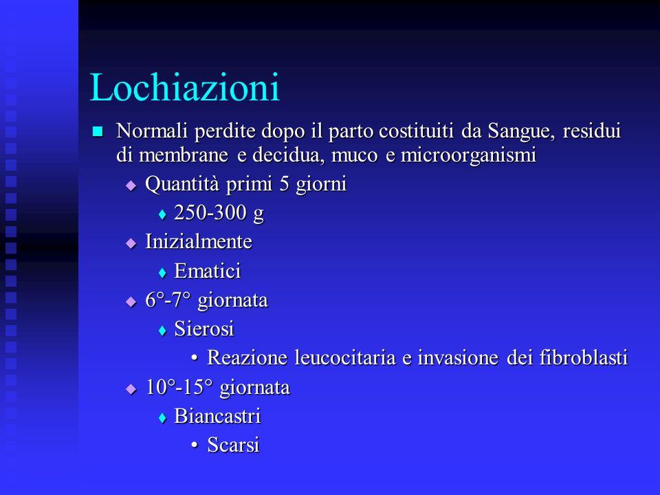 Lochiazioni Normali perdite dopo il parto costituiti da Sangue, residui di membrane e decidua, muco e microorganismi.