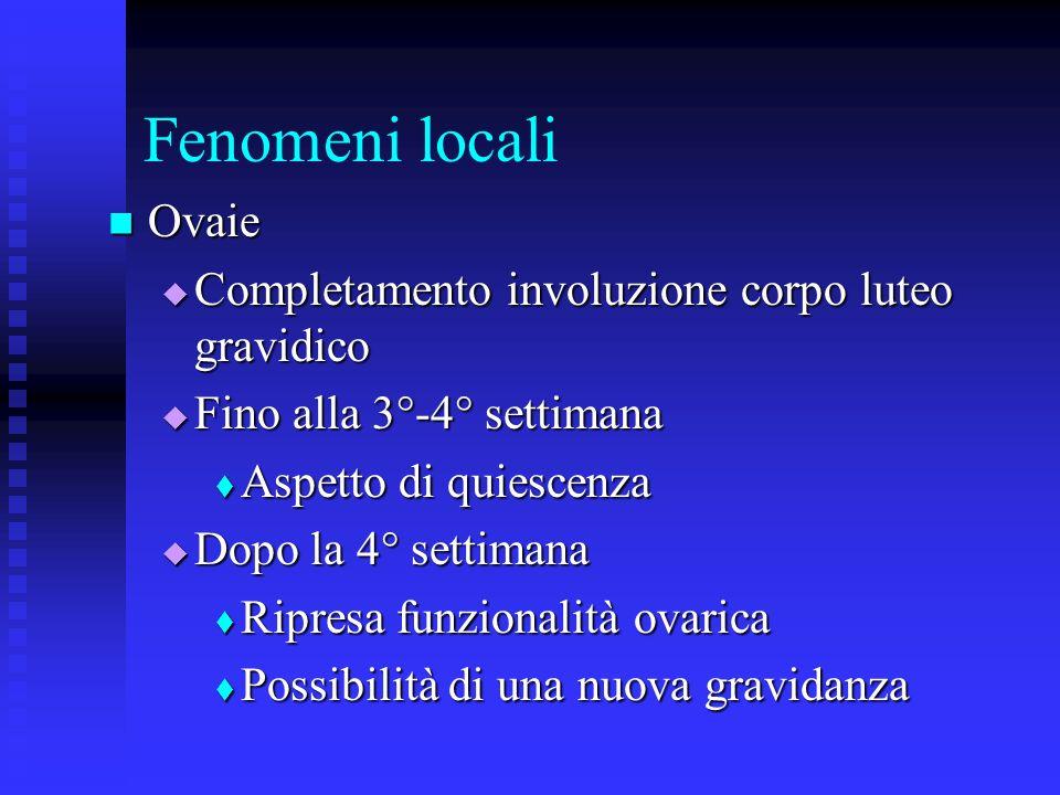 Fenomeni locali Ovaie Completamento involuzione corpo luteo gravidico