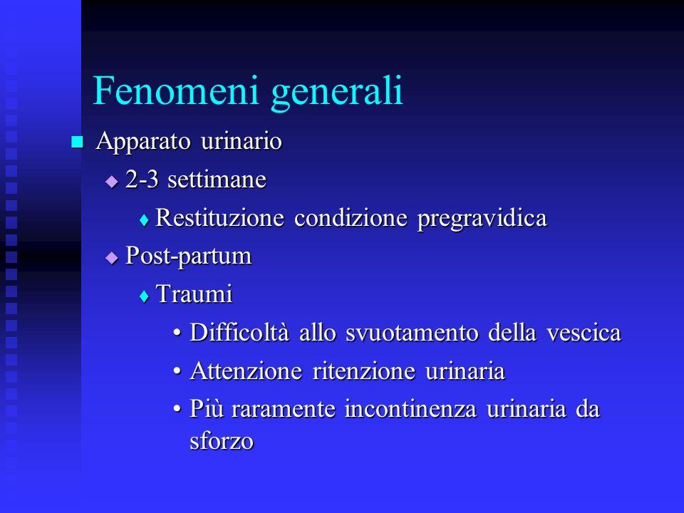 Fenomeni generali Apparato urinario 2-3 settimane