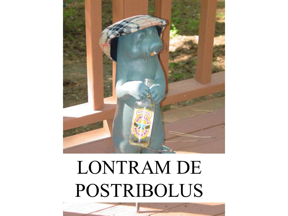 LONTRAM DE POSTRIBOLUS