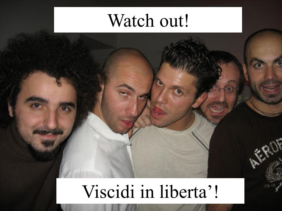 Watch out! Viscidi in liberta'!