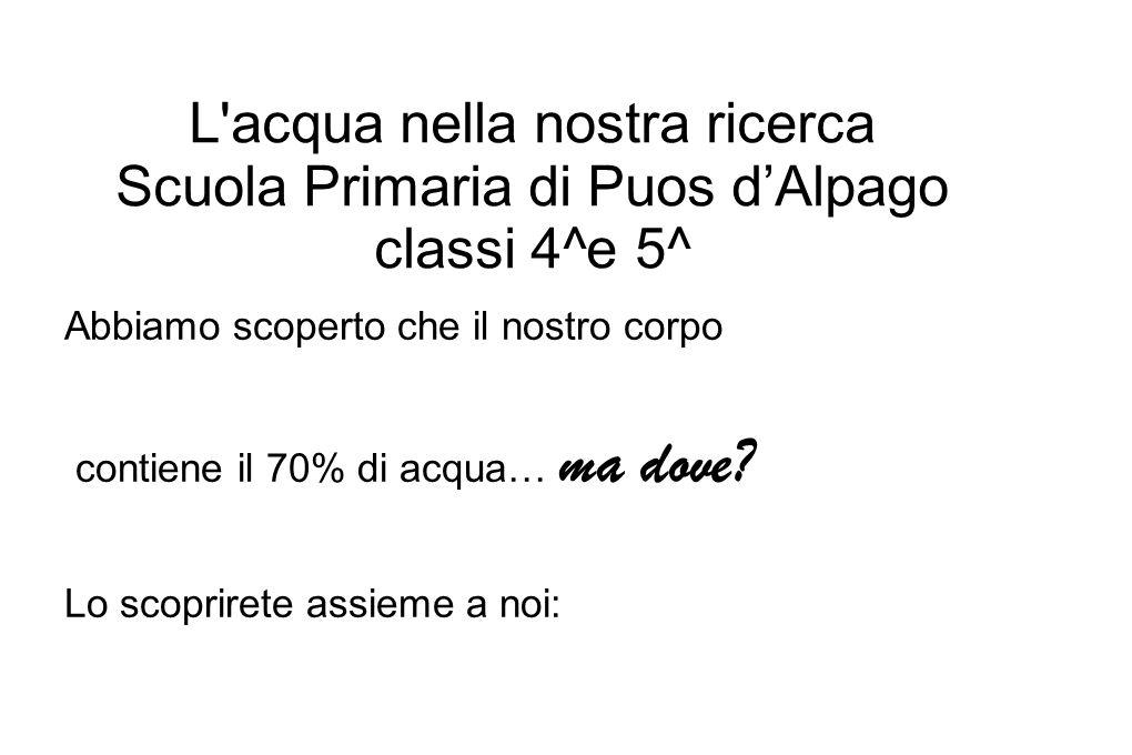 L acqua nella nostra ricerca Scuola Primaria di Puos d'Alpago classi 4^e 5^