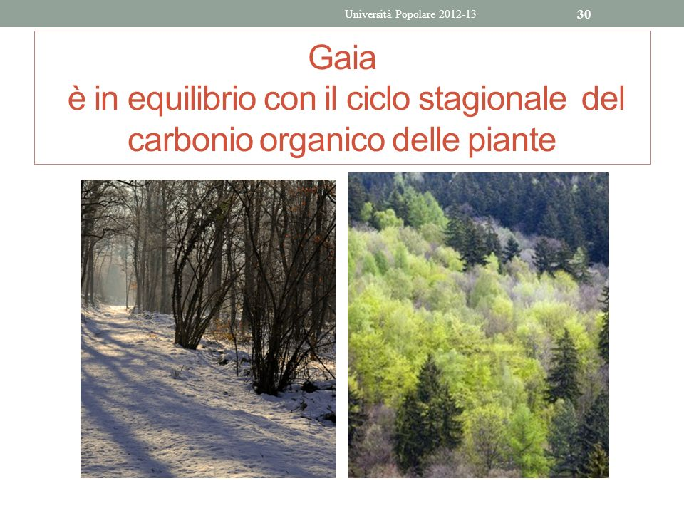 Università Popolare 2012-13 Gaia è in equilibrio con il ciclo stagionale del carbonio organico delle piante.