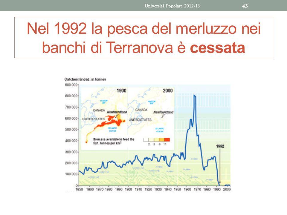 Nel 1992 la pesca del merluzzo nei banchi di Terranova è cessata