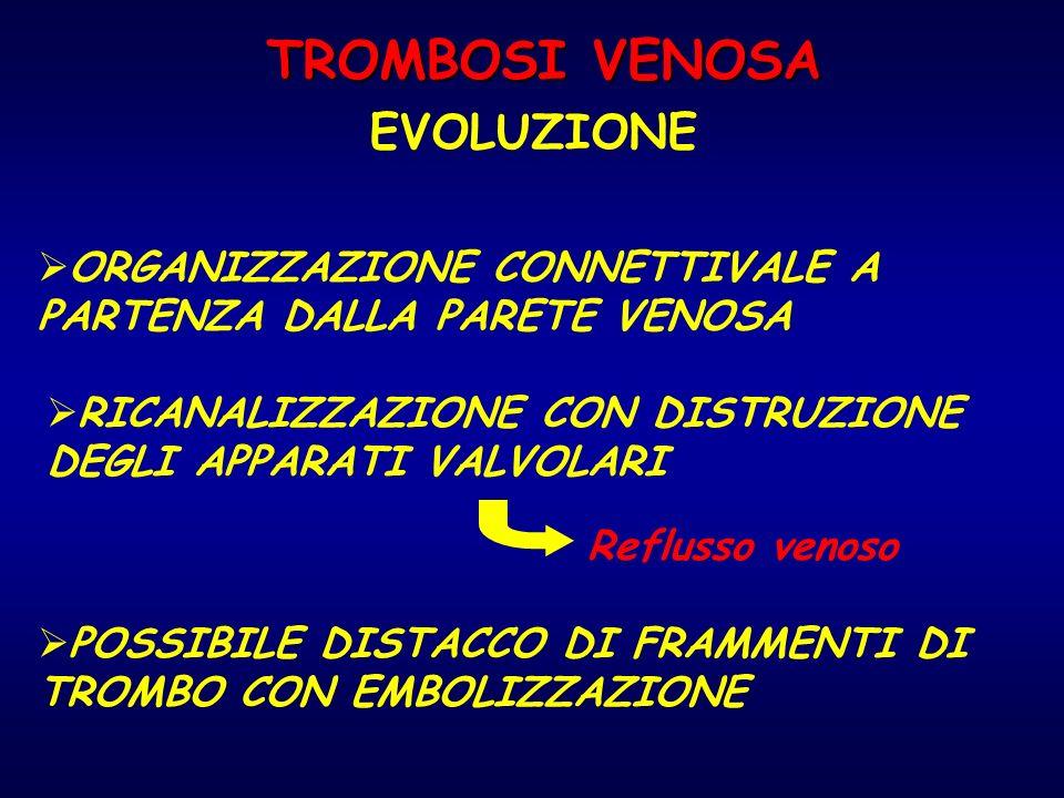 TROMBOSI VENOSA EVOLUZIONE