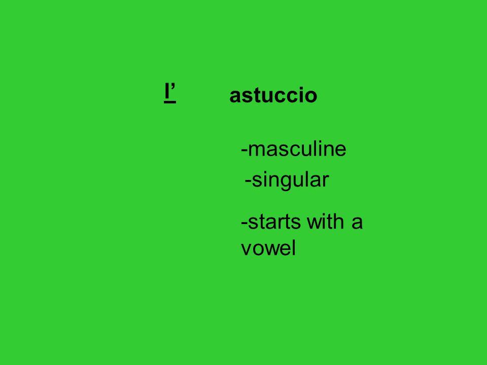 l' astuccio -masculine -singular -starts with a vowel