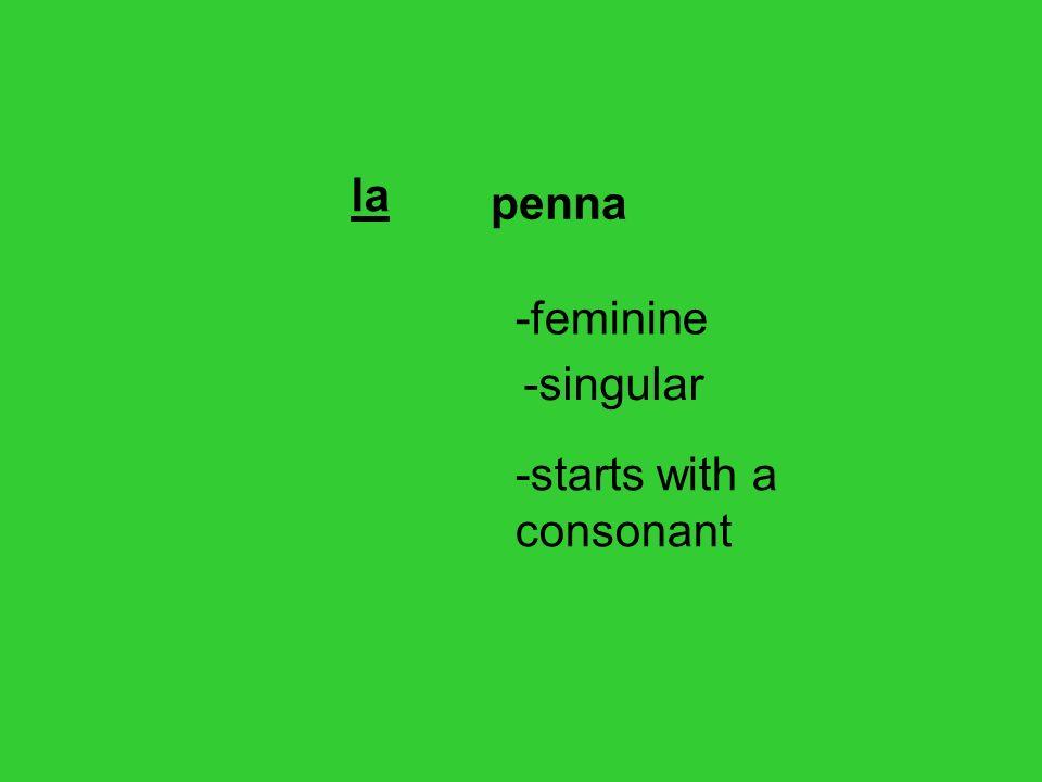 la penna -feminine -singular -starts with a consonant