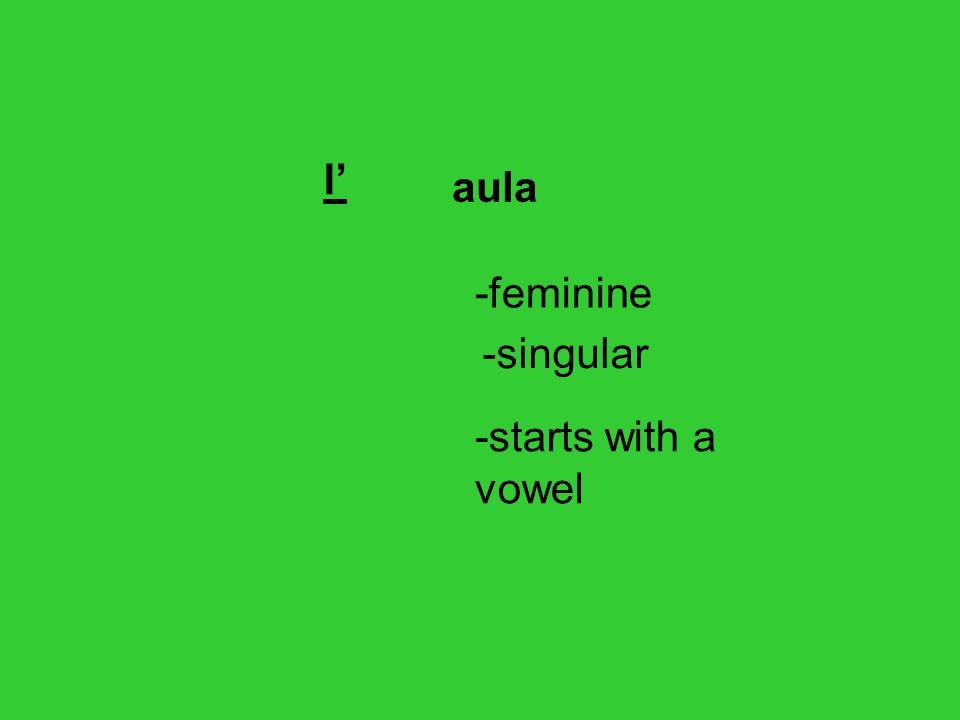 l' aula -feminine -singular -starts with a vowel