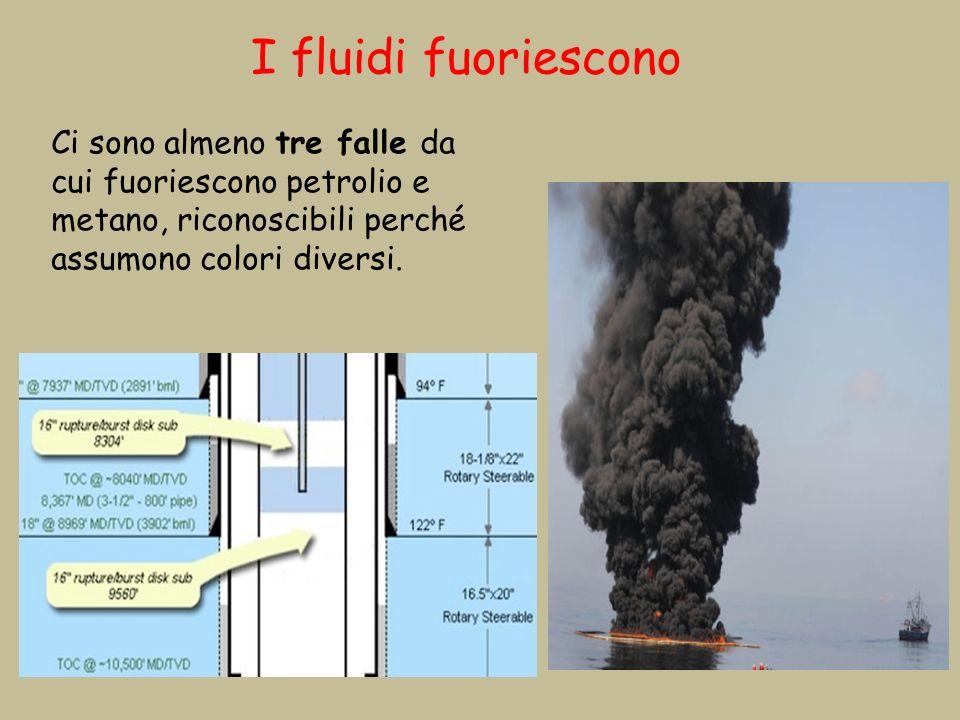 I fluidi fuoriescono Ci sono almeno tre falle da cui fuoriescono petrolio e metano, riconoscibili perché.