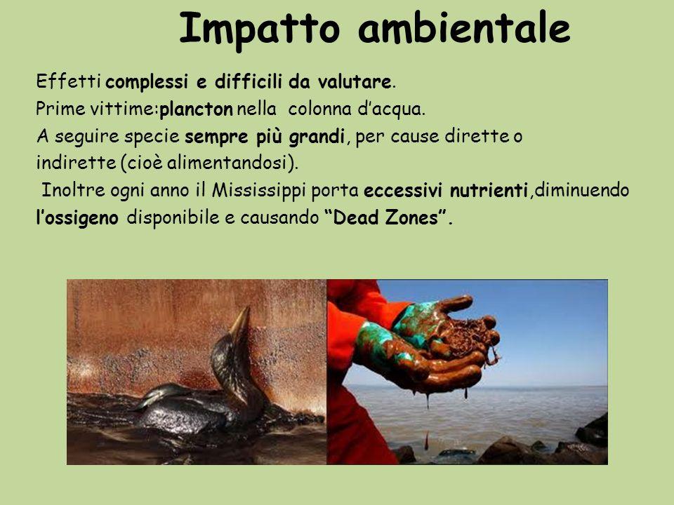 Impatto ambientale Effetti complessi e difficili da valutare.