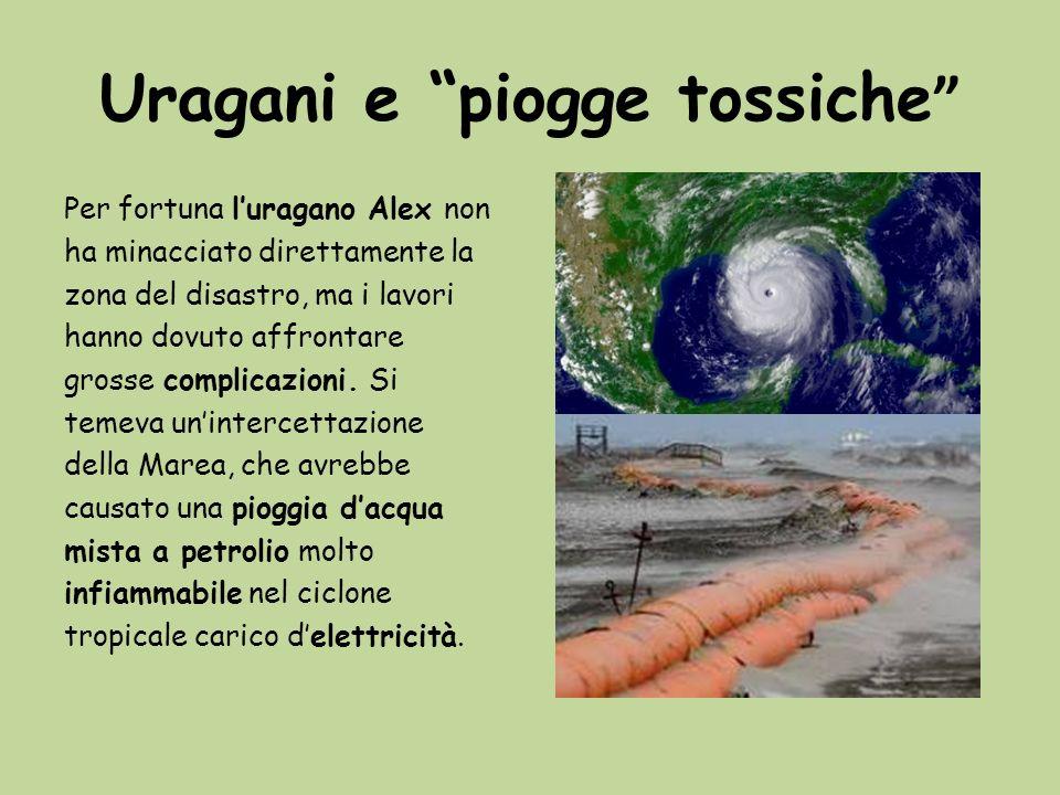 Uragani e piogge tossiche