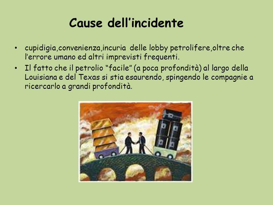 Cause dell'incidente cupidigia,convenienza,incuria delle lobby petrolifere,oltre che l'errore umano ed altri imprevisti frequenti.