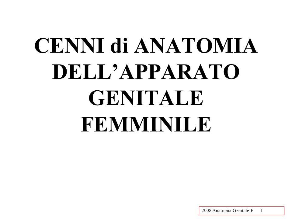 CENNI di ANATOMIA DELL'APPARATO GENITALE FEMMINILE