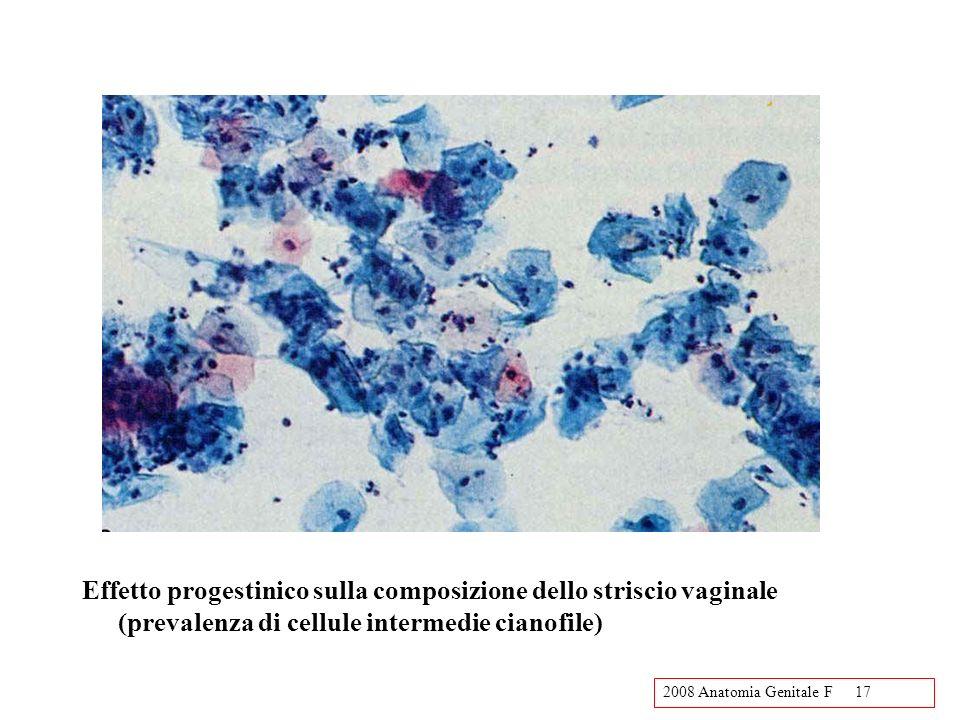 Effetto progestinico sulla composizione dello striscio vaginale (prevalenza di cellule intermedie cianofile)