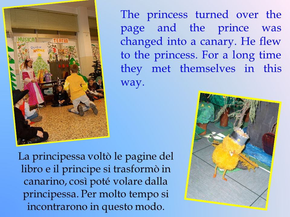 The princess turned over the page and the prince was changed into a canary. He flew to the princess. For a long time they met themselves in this way.