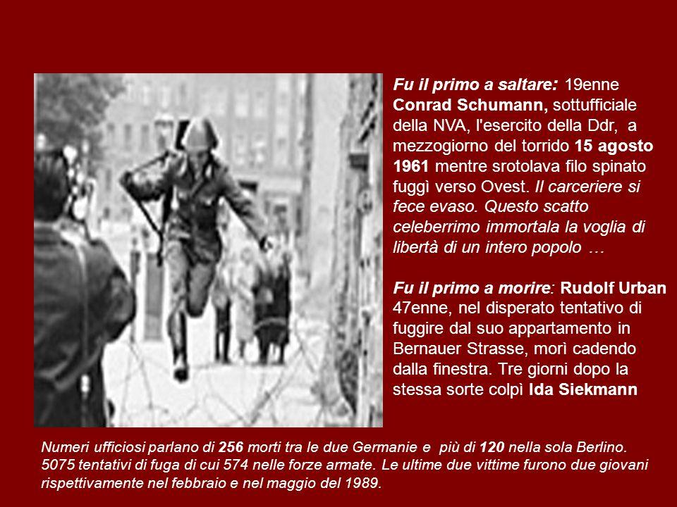 Fu il primo a saltare: 19enne Conrad Schumann, sottufficiale della NVA, l esercito della Ddr, a mezzogiorno del torrido 15 agosto 1961 mentre srotolava filo spinato fuggì verso Ovest. Il carceriere si fece evaso. Questo scatto celeberrimo immortala la voglia di libertà di un intero popolo …