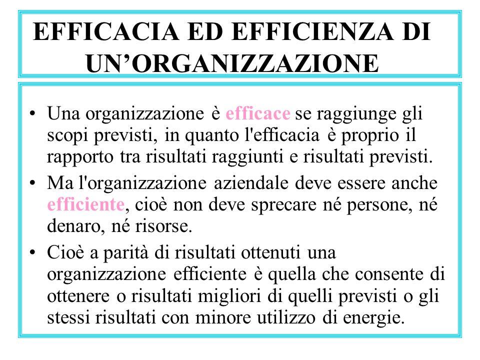 EFFICACIA ED EFFICIENZA DI UN'ORGANIZZAZIONE