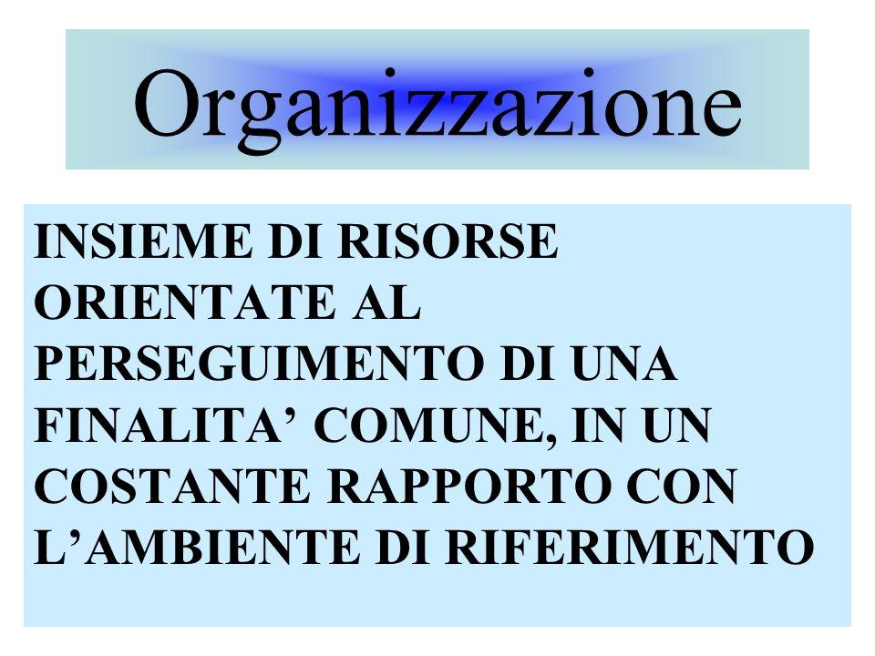 Organizzazione INSIEME DI RISORSE ORIENTATE AL PERSEGUIMENTO DI UNA FINALITA' COMUNE, IN UN COSTANTE RAPPORTO CON L'AMBIENTE DI RIFERIMENTO.