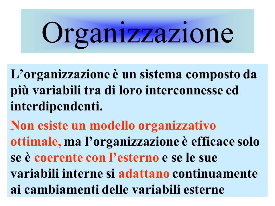 Organizzazione L'organizzazione è un sistema composto da più variabili tra di loro interconnesse ed interdipendenti.