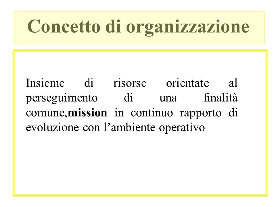Concetto di organizzazione