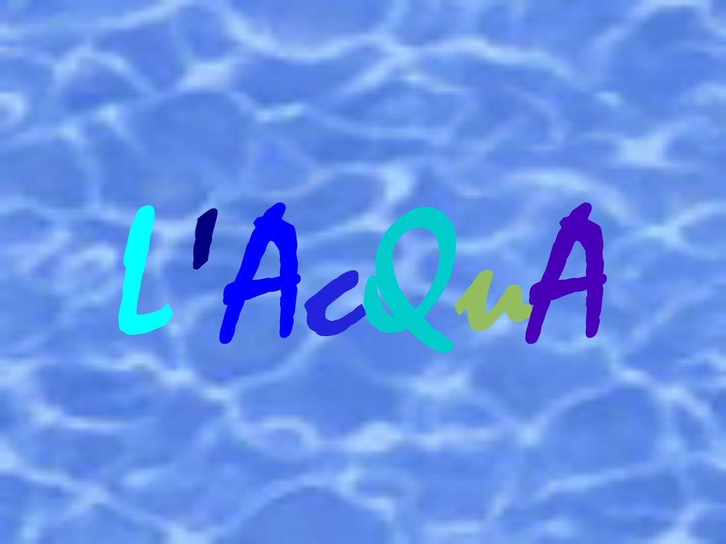 L AcQuA