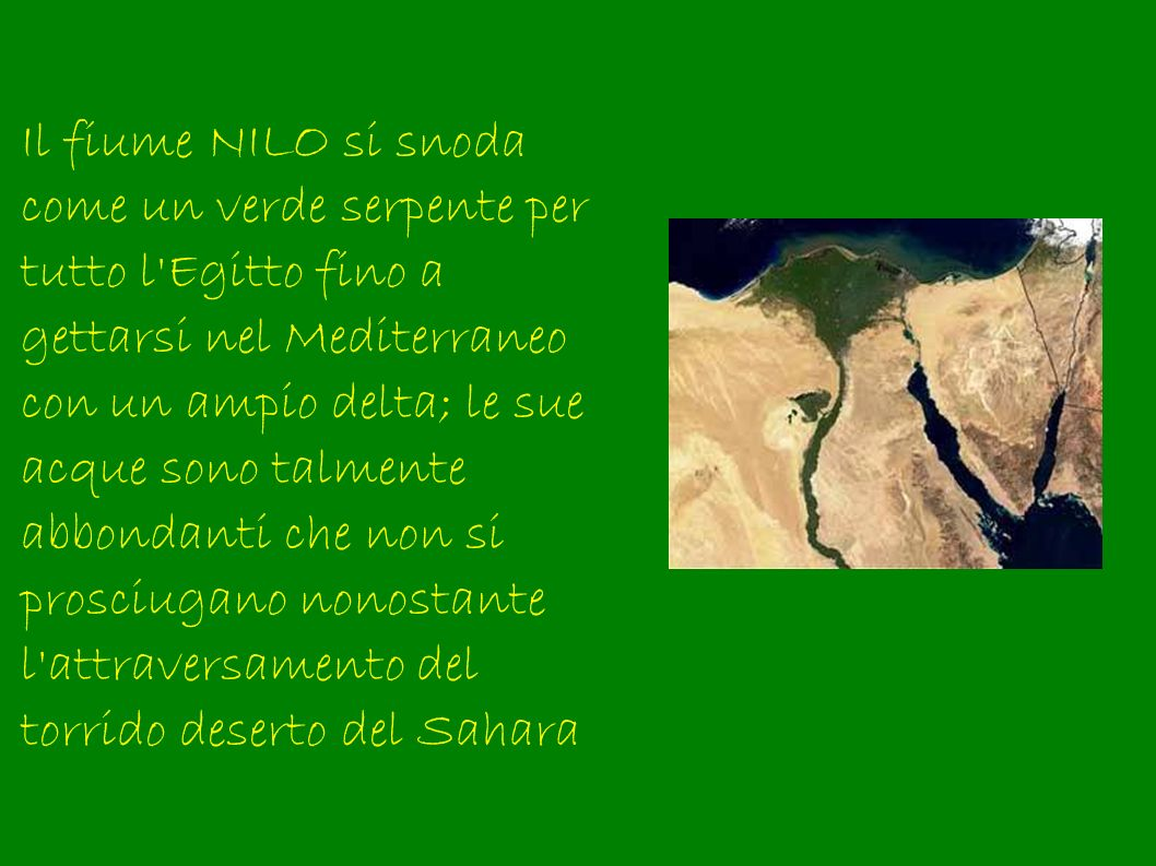 Il fiume NILO si snoda come un verde serpente per tutto l Egitto fino a gettarsi nel Mediterraneo con un ampio delta; le sue acque sono talmente abbondanti che non si prosciugano nonostante l attraversamento del torrido deserto del Sahara