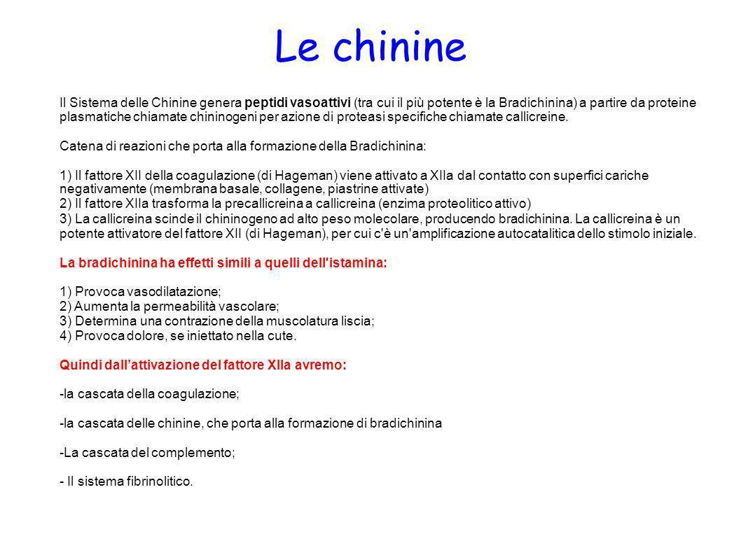 Le chinine