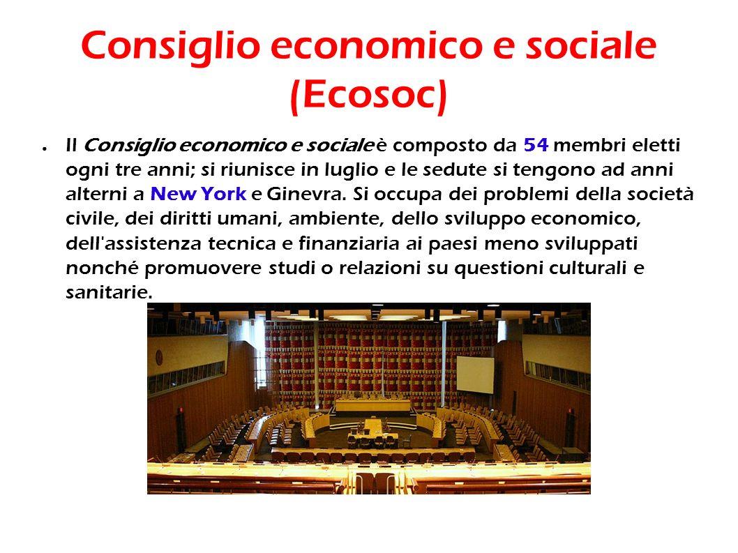 Consiglio economico e sociale (Ecosoc)