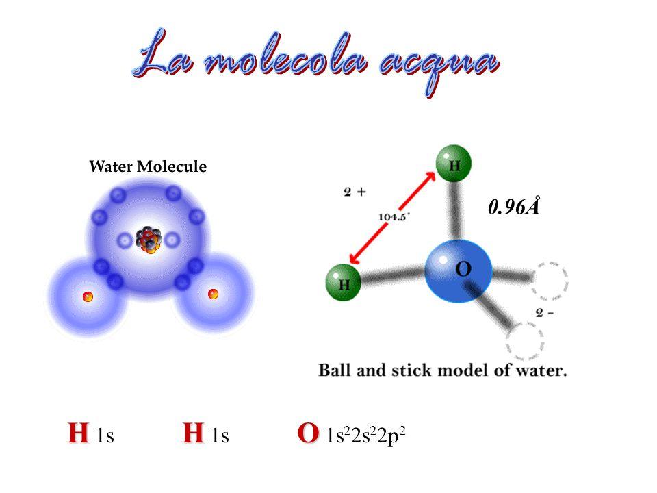 La molecola acqua 0.96Å H 1s H 1s O 1s22s22p2
