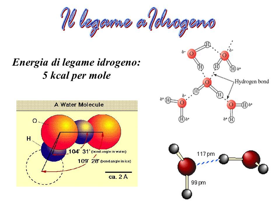Energia di legame idrogeno: