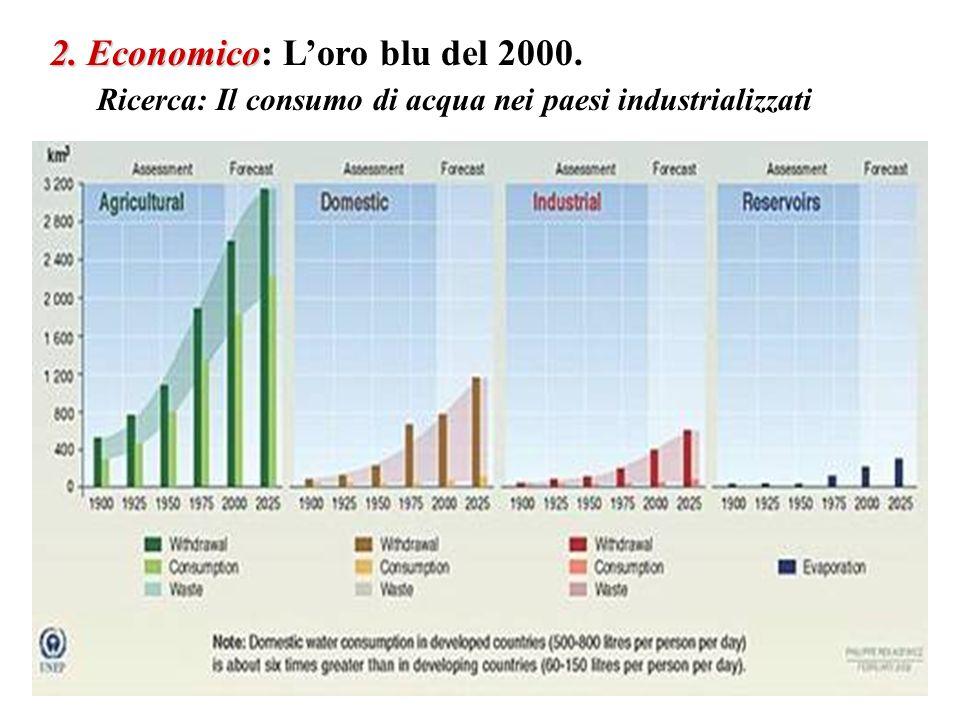 2. Economico: L'oro blu del 2000.