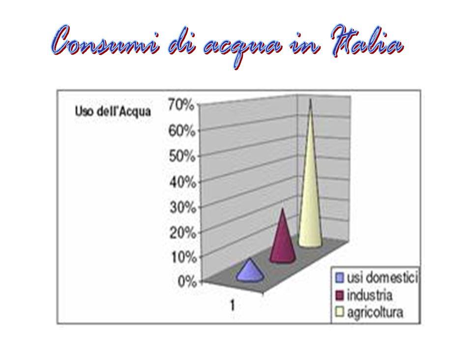 Consumi di acqua in Italia