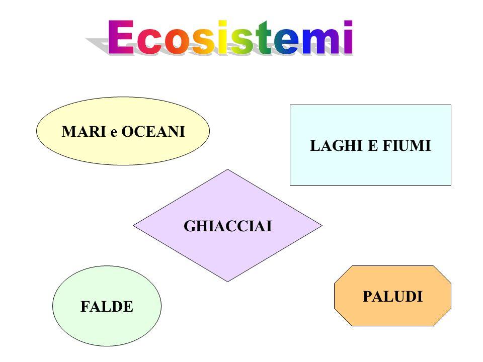 Ecosistemi MARI e OCEANI LAGHI E FIUMI GHIACCIAI FALDE PALUDI