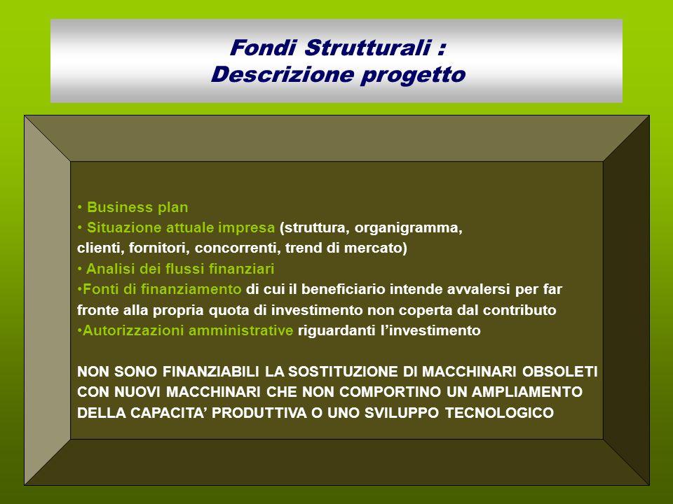 Fondi Strutturali : Descrizione progetto