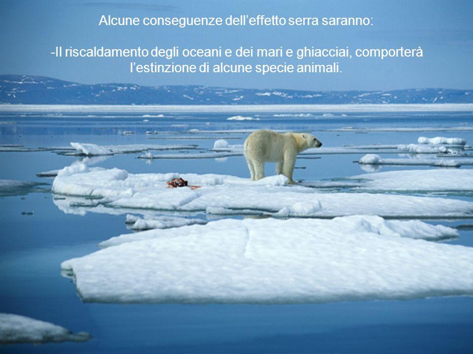 Alcune conseguenze dell'effetto serra saranno: -Il riscaldamento degli oceani e dei mari e ghiacciai, comporterà l'estinzione di alcune specie animali.
