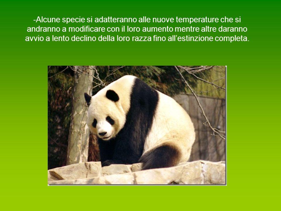 -Alcune specie si adatteranno alle nuove temperature che si andranno a modificare con il loro aumento mentre altre daranno avvio a lento declino della loro razza fino all'estinzione completa.