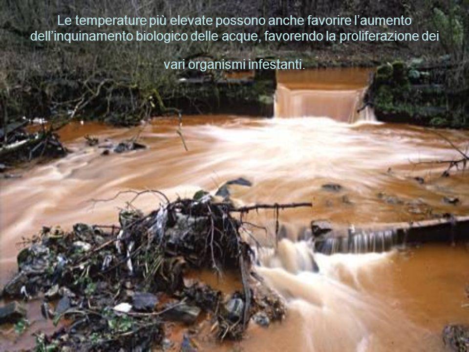 Le temperature più elevate possono anche favorire l'aumento dell'inquinamento biologico delle acque, favorendo la proliferazione dei vari organismi infestanti.