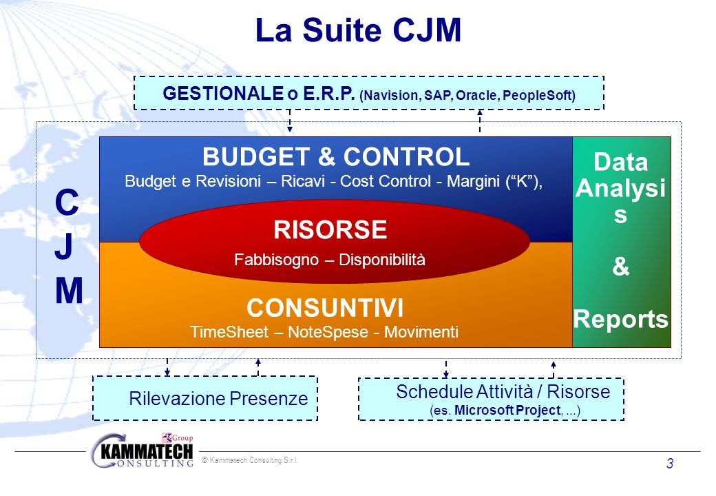 GESTIONALE o E.R.P. (Navision, SAP, Oracle, PeopleSoft)