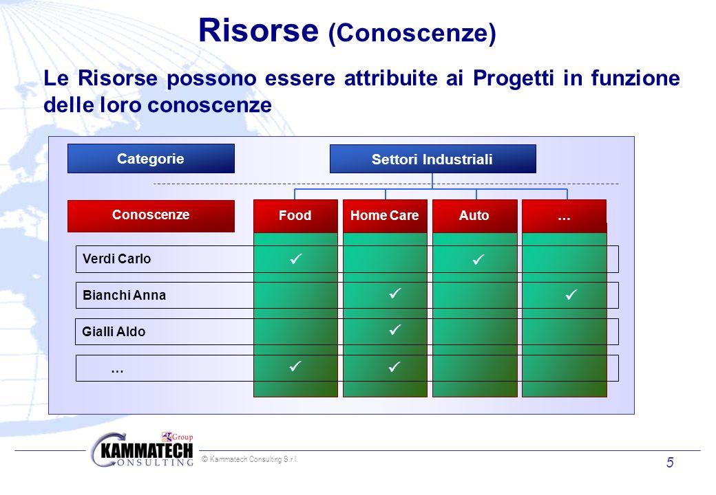 Risorse (Conoscenze)Le Risorse possono essere attribuite ai Progetti in funzione delle loro conoscenze.