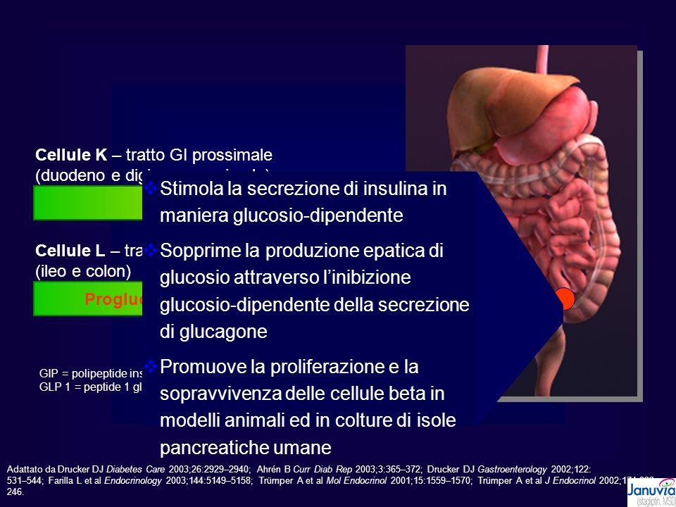 Proglucagone  GLP 1(7-37)  GLP 1(7-36)NH2