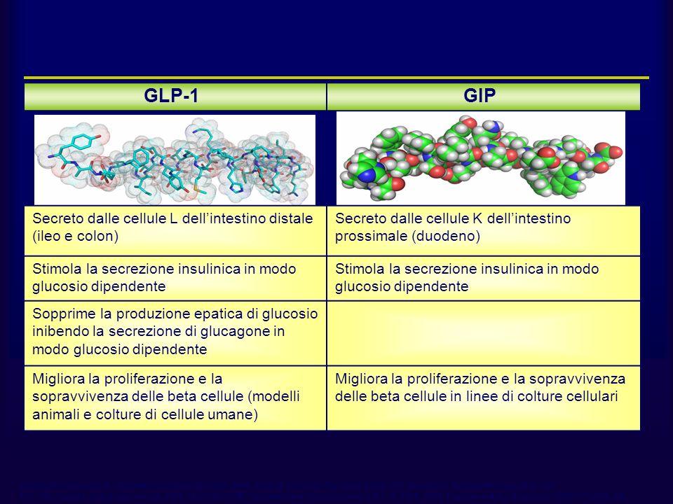 GLP-1 e GIP 2/Ahren 2003, p 367, C1, ¶2, L1-14. 3/Drucker 2002, p 535, C1, ¶1, L1-9. 1/Drucker 2003B,